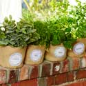 Easy To Make Herb Cozies